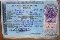 Визу в Парагвай российские туристы получат в аэропорту
