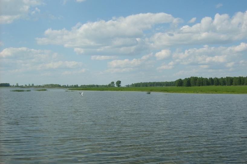 Ученые из Екатеринбурга придумали новый способ очистки воды