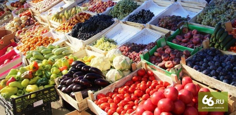 Россельхознадзор пригрозил остановить реэкспорт овощей и фруктов из Белоруссии