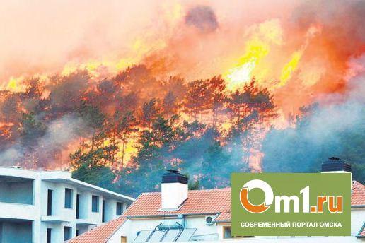 Из-за лесного пожара в Анталье сгорели пять отелей