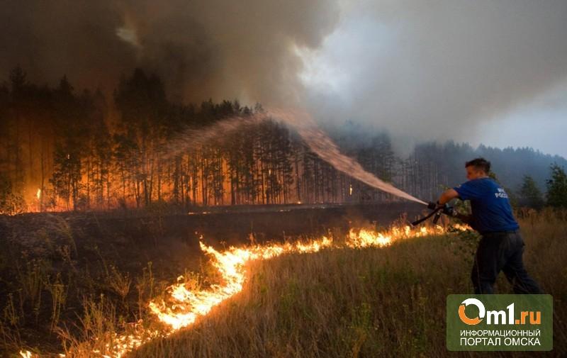 В Омской области 10 районов объявлены пожароопасными