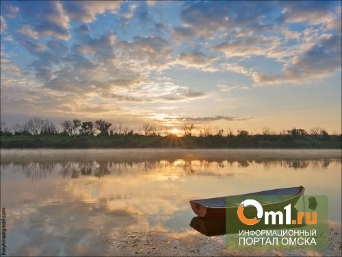 В Омске в Иртыше утонул мужчина
