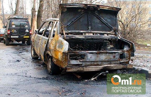 Житель Омской области обгорел при попытке потушить машину жен