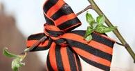 С 20 апреля в Омске начнут раздавать георгиевские ленточки