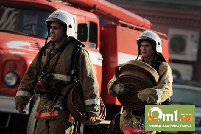 За сутки в Омске сгорело четыре автомобиля