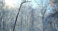 Омичам обещают заморозки по ночам до -22