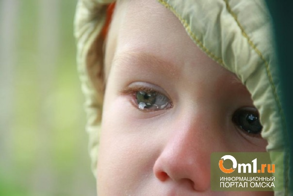 В Омской области мать с ребенком остались без крыши над головой