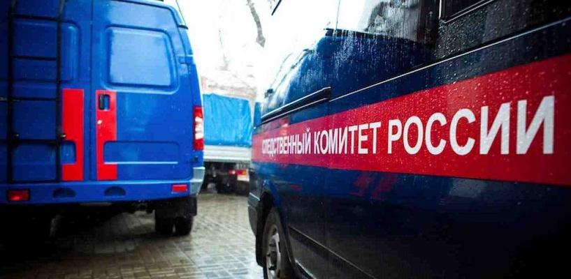 В Омске задержали 18-летнего организатора детских праздников по подозрению в педофилии