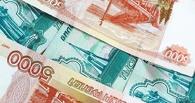 Из бюджета Омской области выделили 1,5 млн рублей на освещение деятельности фракций