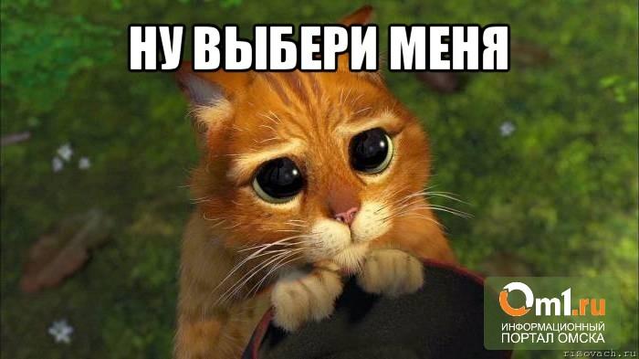 «Омскэлектро» отдадут тому, кто выиграет конкурс
