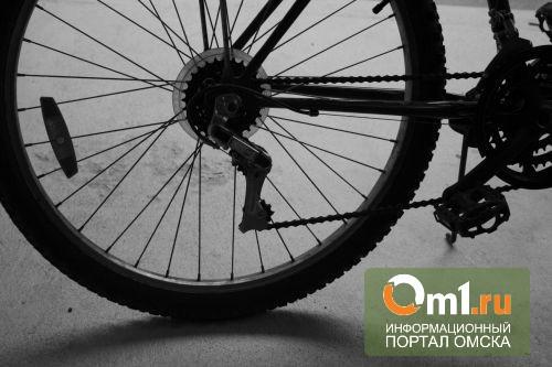В Омске будут судить велосипедиста, который переломал женщине кости