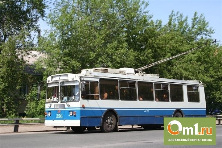 Упавшая в троллейбусе трехлетняя омичка попала в больницу