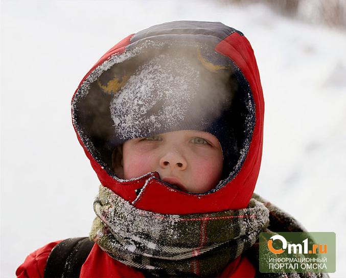 Врачи: выброшенный в Омске на снег ребенок мог умереть