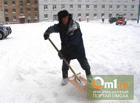 Омские автоинспекторы ловят снежных хулиганов