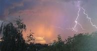 В Омске ночью будет буря: объявлено штормовое предупреждение