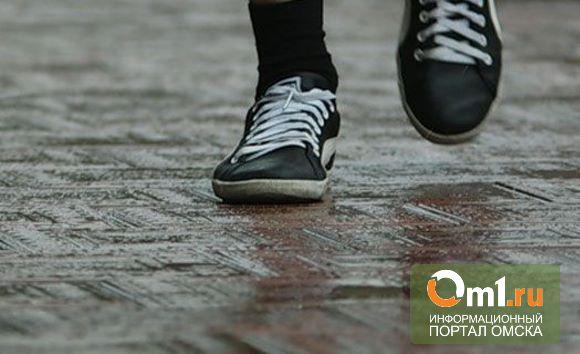 В Омске снова разыскивают 17-летнюю девушку