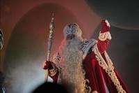 Имущество Деда Мороза оценили в 74 млн рублей