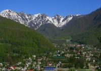 После Олимпиады коммунальные сети Сочи отдадут «Газпрому»