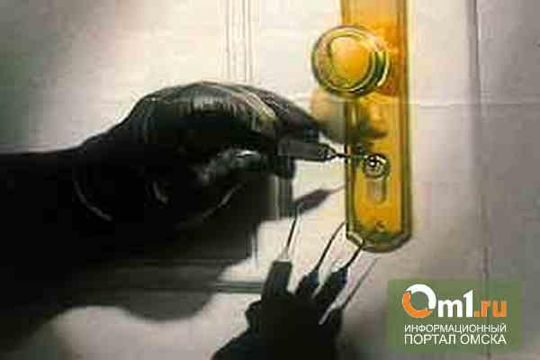 Две женщины из Челябинска грабили квартиры омичей