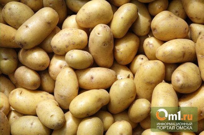 Омичи отправили на Дальний Восток 31 вагон картофеля