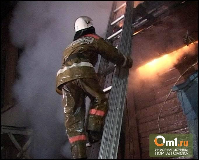 В Омской области из горящего дома спасли 13 человек