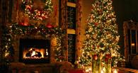 Две омички украли у соседа новогоднюю елку, фужеры и плед