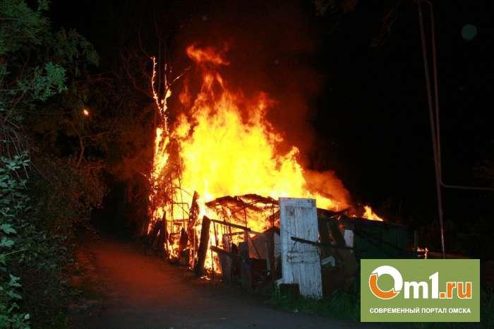В Омской области за один вечер сгорели три человека