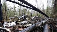 Российские журналисты заявили,что нашли пропавший год назад самолет