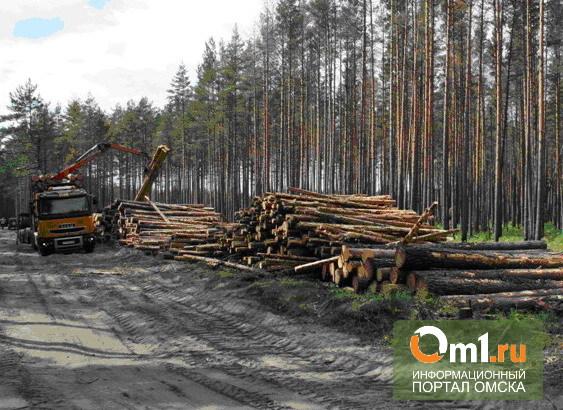 В Омской области за вырубку леса предприниматель заплатит 100 тыс рублей