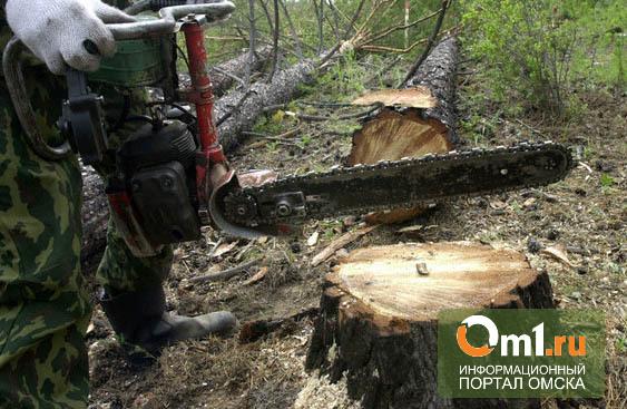 В Омской области мужчина нарубил дрова на 1 300 000 рублей