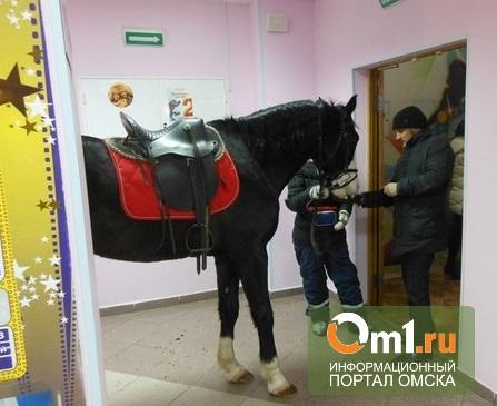 В Омске в «Атриуме» на презентации фильма мучили коня
