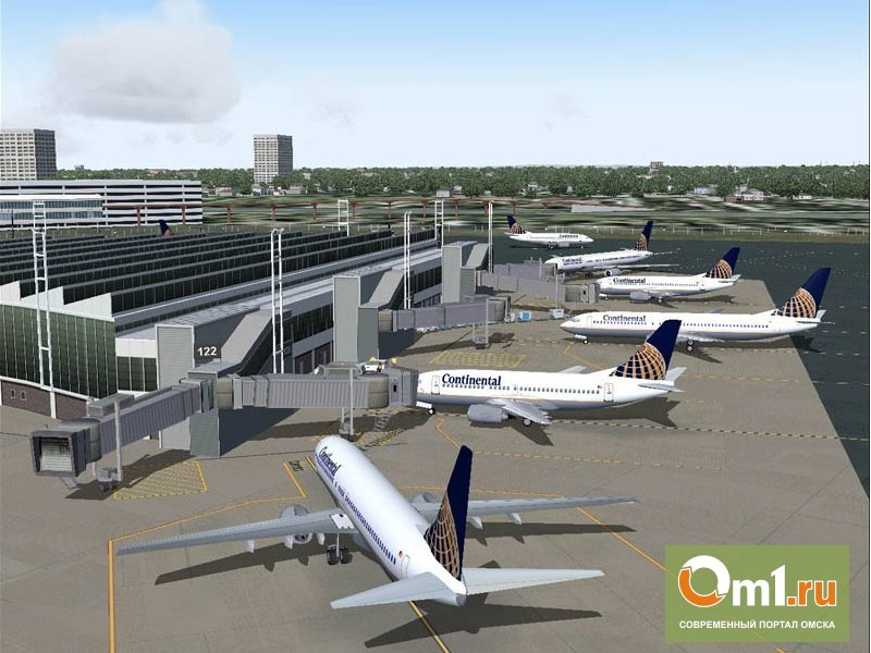 Федералы требуют построить аэропорт «Омск-Федоровка»
