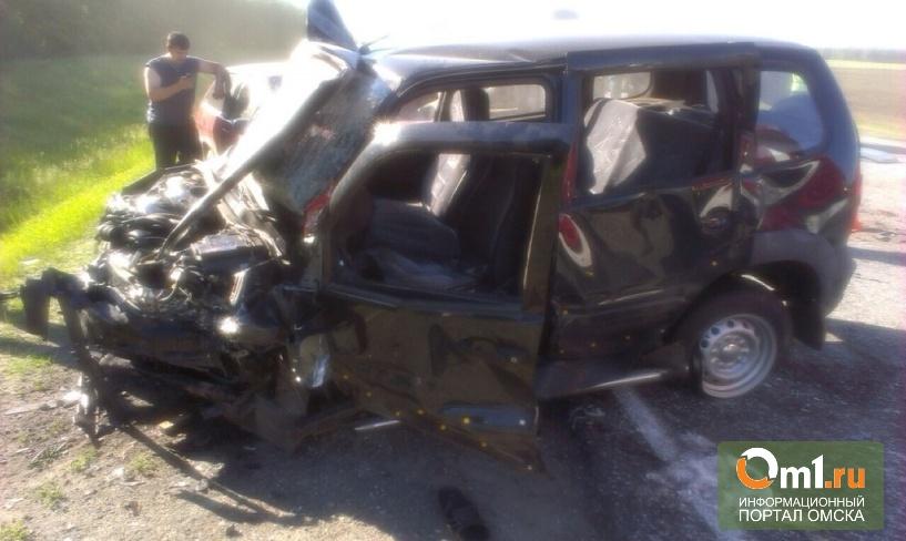 Авария на трассе «Омск – Черлак» произошла по вине молодого водителя