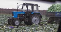 Российским аграриям создадут почти 100 тысяч новых рабочих мест