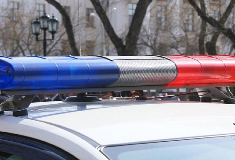 Перебегая дорогу с украденной сумочкой, омич нарвался на патруль ДПС