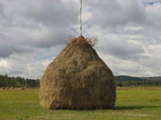 В Омской области необъяснимо загорелся стог сена