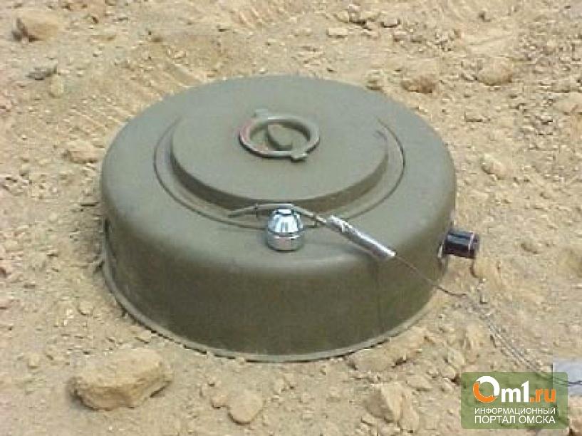 В Омске в заброшенном доме нашли учебную мину