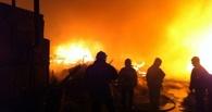 В Омске сгорел питомник для породистых собак вместе с животными