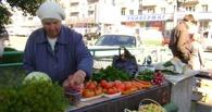 Садоводы Омска не хотят торговать своей продукцией в санкционированных местах