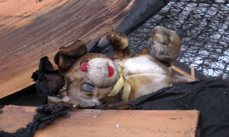 В Омской области в частном доме сгорели двое детей