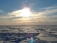 Пятая часть ледников канадской Арктики растает к 2100 году
