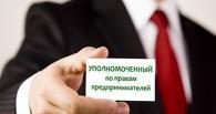 В Омске в этом году наконец-то появится бизнес-омбудсмен