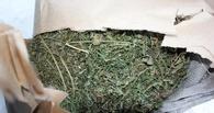 В Омской области наркополицейские изъяли 14 кг марихуаны