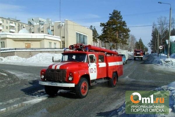 В Омске из-за пожара в многоквартирном доме погибли мать и ребенок