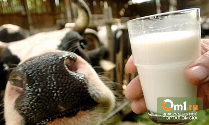 В Омске планируют производить еще больше молока