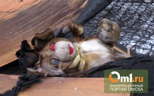 В Омской области в селе Прииртышье на пожаре пострадал ребенок