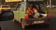 Мужчина вёз по Омску детей в багажнике «Оки»