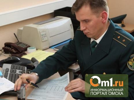 Омская таможня перестанет выдавать паспорта не экологичным автомобилям
