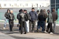После погромов в Бирюлево единороссы решили бороться с нелегалами