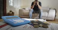 Житель Омской области сделал себя алиментщиком, чтобы не платить за кредит